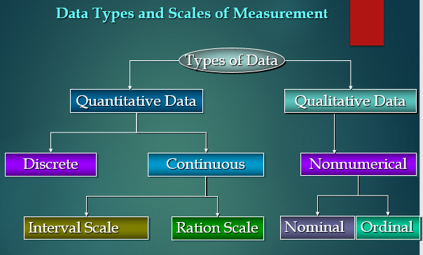 Data Types and Scales of Measurements in Statistics | T/DG Blog - Digital Thoughts