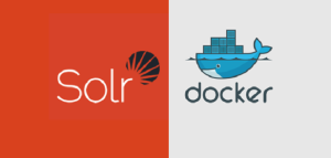 Building Docker image with Solr