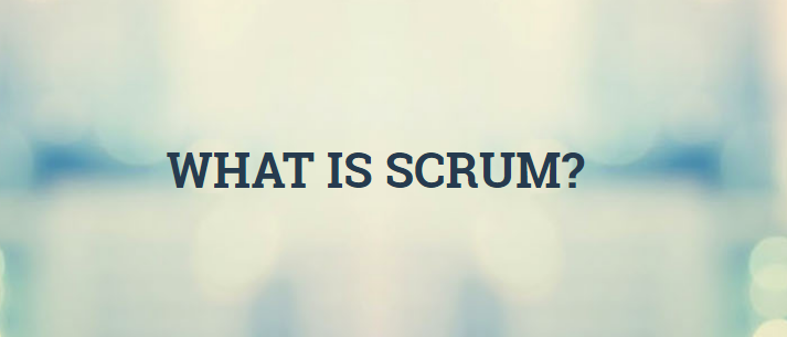 SCRUM  - Improving the Profession of Software Delivery